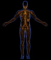 Manual Lymphatic Drainage list